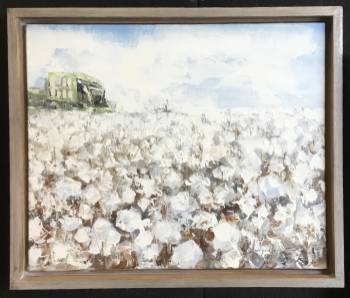 Cotton with tractor